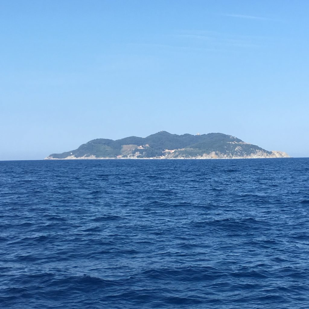 Gorgona eiland vanaf de zee gezien