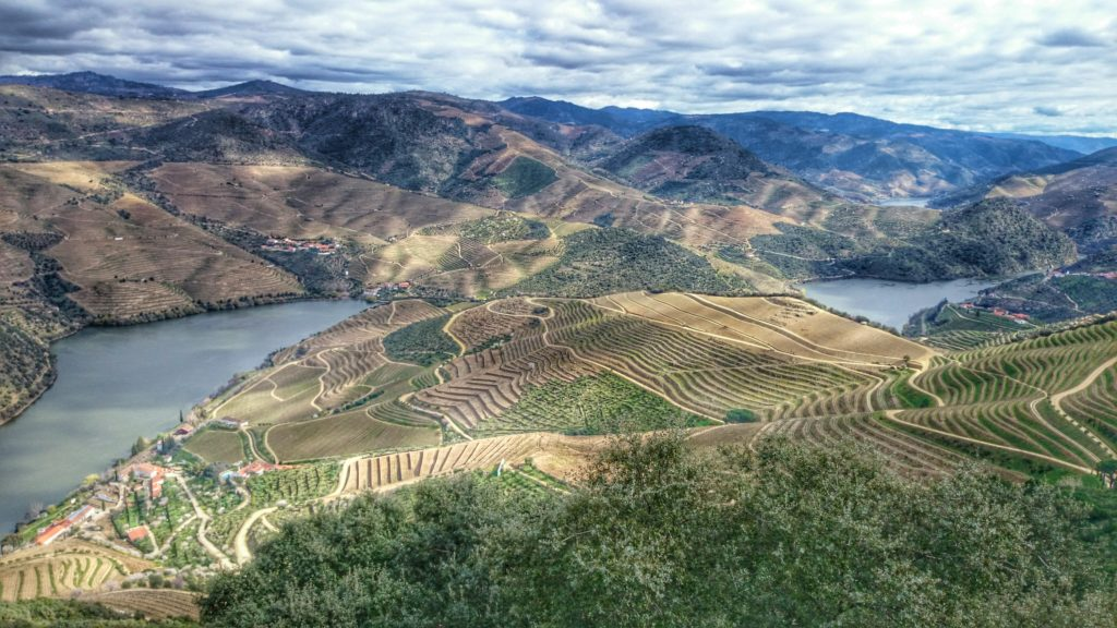 prachtige foto van de Douro-vallei met wijngaarden