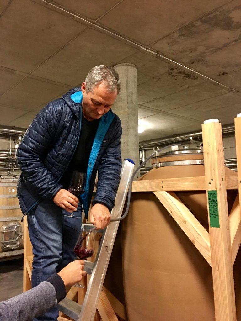Gernot Heinrich schenkt Blaufränkisch uit amfora in glas
