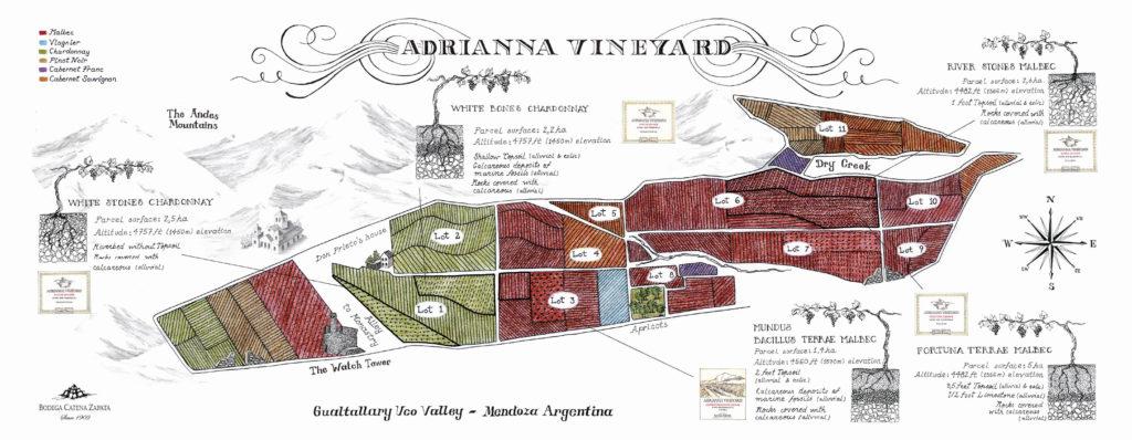 map Adrianna-vineyard