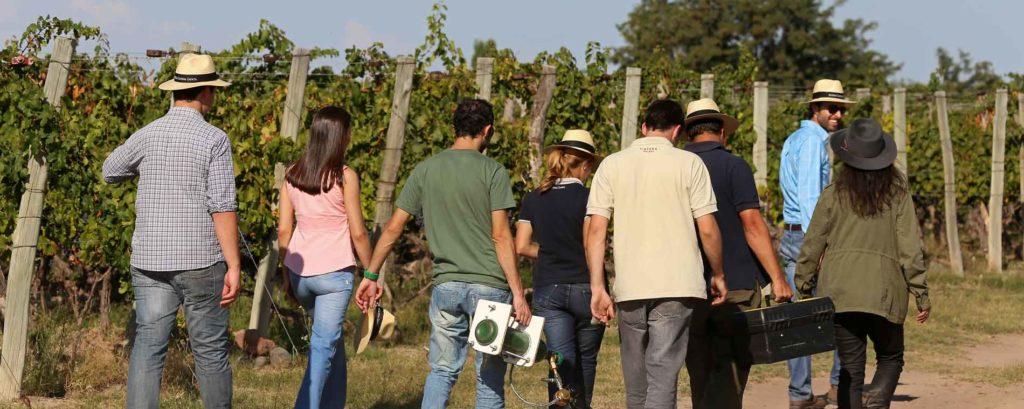 onderzoeksteam van Catena in de wijngaard