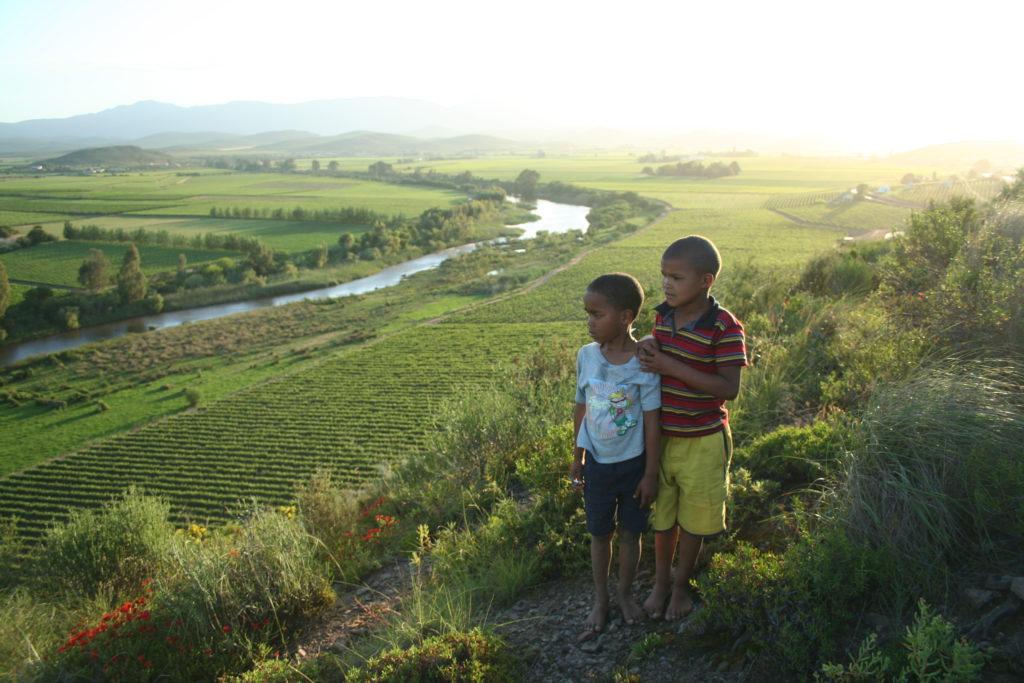 Twee jongetjes in de wijngaard in Zuid-Afrika