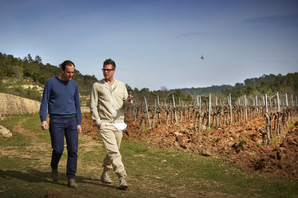 Brad Pitt wijngaard Miraval